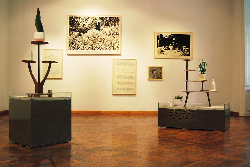 Silviculture (Serviformica) Silviculture (Raptiformica), 2013, artificial nests of slave and slavemaker ants, installation view at Medium Galerie, Bratislava, SK